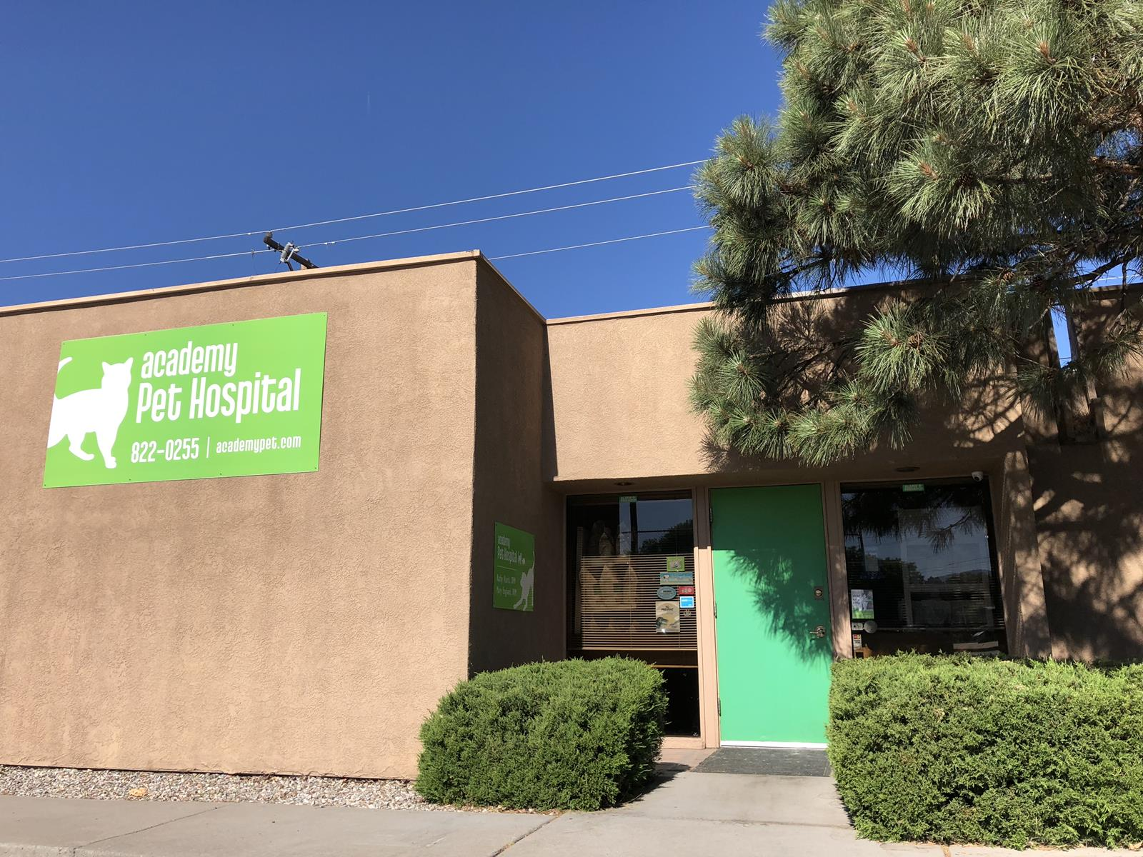 Veterinarian in Albuquerque, NM | Academy Pet Hospital